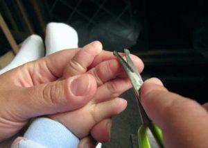Как правильно подстригать ребенку ногти