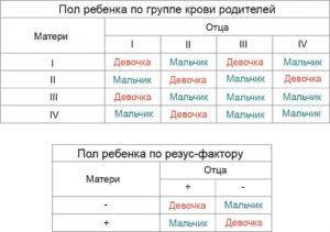 Определить пол ребенка по обновлению крови родителей рассчитать