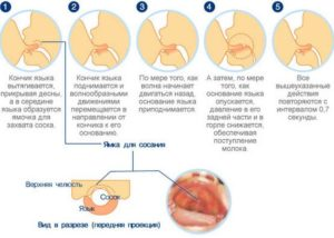 Что делать с грудью когда бросаешь кормить грудью