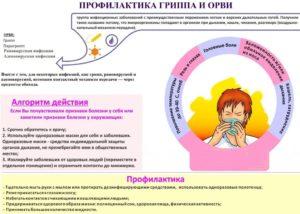 Первый триместр беременности орви