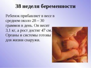 37 недель беременности доношенный ребенок