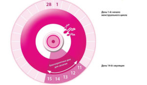 Календарь опасных дней для зачатия