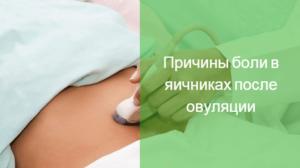 Болит правый яичник овуляция