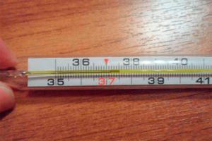 Температура под вечер 37