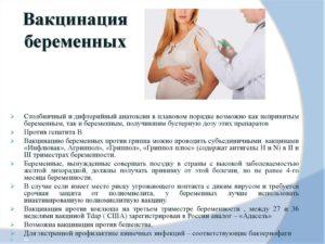 Планирование беременности и прививки