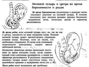 Мочевой пузырь болит после родов