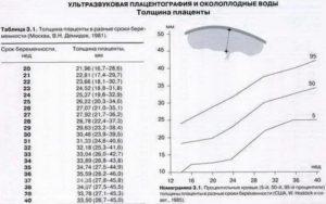 Размер плаценты по неделям