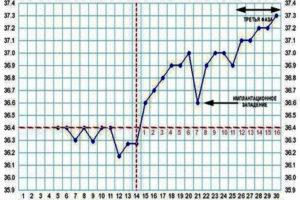37 6 температура при беременности на ранних сроках
