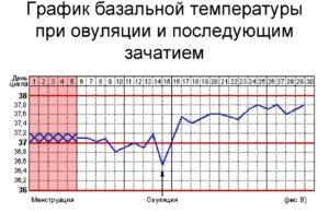 Температура базальная при простуде