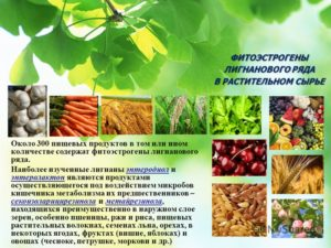 Фитоэстрогены травы для женщин