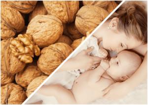 Можно ли при кормлении грудью употреблять грецкие орехи