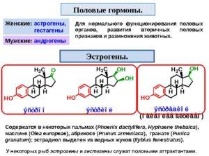 Женский половой гормон эстроген