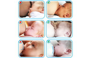 Как у ребенка отобрать грудь