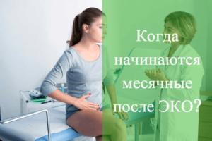 Месячные при эко беременности