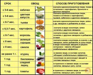 Что вводить в прикорм после овощей и каш