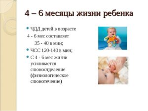 Развитие ребенка в шесть месяцев