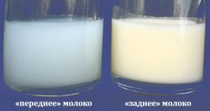 Соленое на вкус грудное молоко