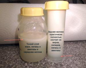 Что нужно есть чтобы было много грудного молока