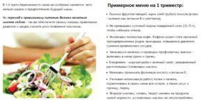 Полезные продукты в первом триместре беременности