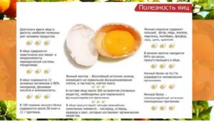 Прикорм яйцо когда вводить