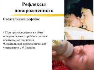 У новорожденного отсутствует сосательный рефлекс