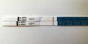 4 день подсадки эмбрионов
