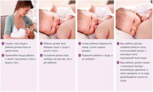 Как прикладывать к груди младенца