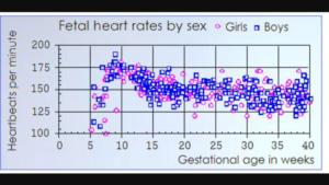 Как определить пол по чсс