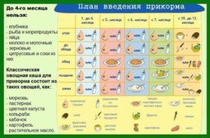 Введение рыбы в прикорм