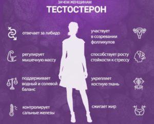 Почему в женском организме много мужских гормонов