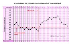 Температура тела в овуляцию