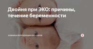 Многоплодная беременность при эко