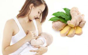 Можно кормящей маме имбирь