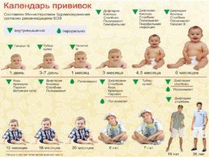 Прививки у новорожденных по месяцам