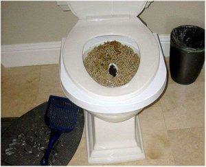 Как сходить в туалет по большому после родов