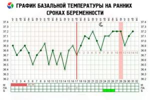 Какая должна быть температура на первых неделях беременности
