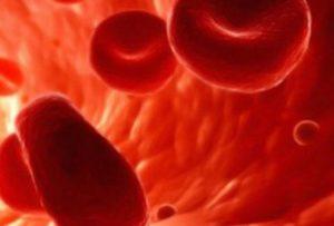 Зачатие и густая кровь