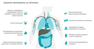 Как влияют антибиотики на кишечник