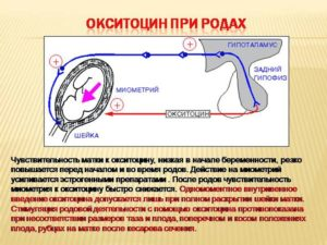 Для чего окситоцин в родах