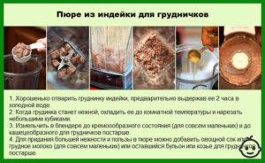 Рецепт индейка для грудничка