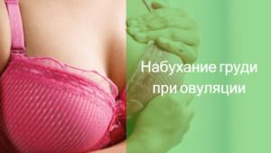 Набухание груди после овуляции