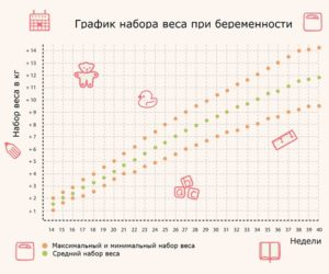 Рассчитать вес беременной по неделям