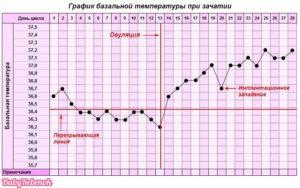 До какого срока держится температура 37 при беременности