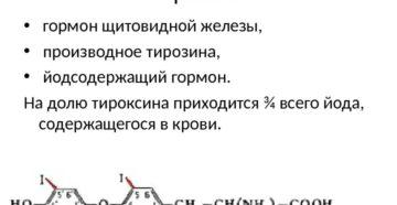 Тироксин это гормон чего