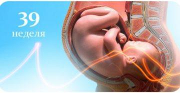 Предвестники родов 39 неделя